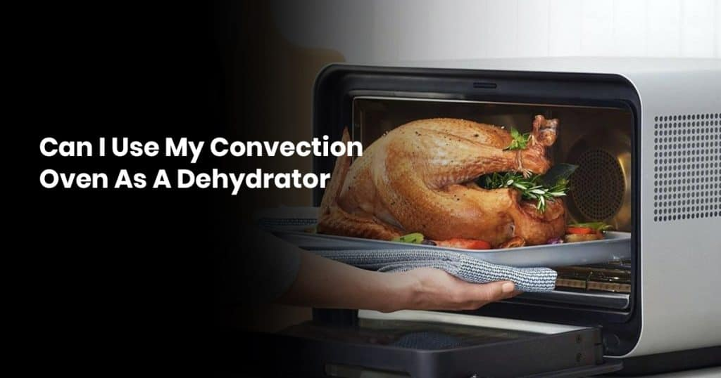 Can I Use My Convection Oven As A Dehydrator